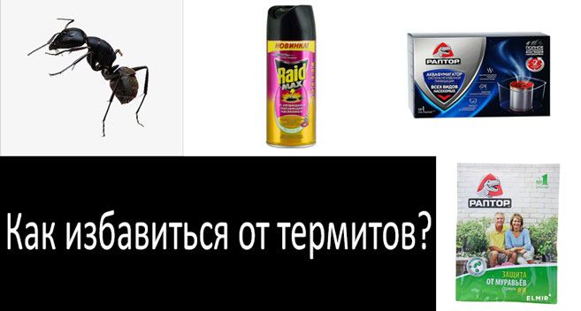 обзор средств против термитов